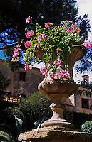 im Garten der Finca Els Calderers bei Sant Joan, Mallorca, Spanien