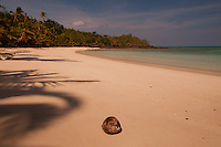 Coconut at Devil's Beach, Turtle Island, Yasawa Islands, Fiji