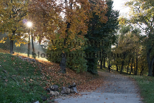 Autumn mood of a public park in Budapest, Hungary on Oct. 20, 2017. ATTILA VOLGYI