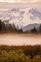 Mt. Rainier from afar