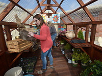 NWA Democrat-Gazette/ANDY SHUPE<br /> Sarah McCue (left), owner of White River Nursery in Fayetteville, works Thursday, March 1, 2018, with Dina Butler to decorate a greenhouse with plants and wares while preparing for the Northwest Arkansas Home Builders Association's NWA Home Show at the Washington County Fairgrounds in Fayetteville. The show begins today and runs through Sunday.