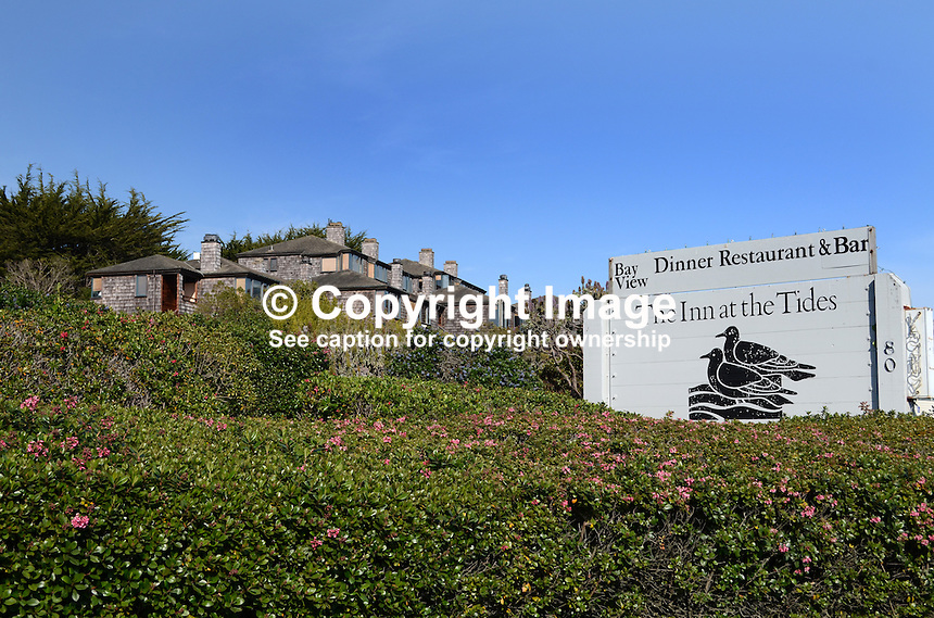 Accomodation, Inn at the Tides, hotel, Bodega Bay, California, USA. 201304292137<br /> <br /> Copyright Image from Victor Patterson, 54 Dorchester Park, Belfast, UK, BT9 6RJ<br /> <br /> Tel: +44 28 9066 1296<br /> Mob: +44 7802 353836<br /> Voicemail +44 20 8816 7153<br /> Skype: victorpattersonbelfast<br /> Email: victorpatterson@me.com<br /> Email: victorpatterson@ireland.com (back-up)<br /> <br /> IMPORTANT: If you wish to use this image or any other of my images please go to www.victorpatterson.com and click on the Terms &amp; Conditions. Then contact me by email or phone with the reference number(s) of the image(s) concerned.