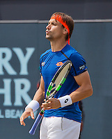 Den Bosch, Netherlands, 10 June, 2016, Tennis, Ricoh Open, David Ferrer (ESP) reacts<br /> Photo: Henk Koster/tennisimages.com
