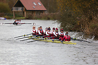 Crew: 217   W U23 8+ U23   Oxford Brookes University Boat Club   OXB-WU23 8+<br /> <br /> Wallingford Head 2017<br /> <br /> To purchase this photo, or to see pricing information for Prints and Downloads, click the blue 'Add to Cart' button at the top-right of the page.