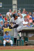 Winston-Salem Dash designated hitter Yermin Mecedes (6) at bat during a game against the Myrtle Beach Pelicans at Ticketreturn.com Field at Pelicans Ballpark on July 23, 2018 in Myrtle Beach, South Carolina. Winston-Salem defeated Myrtle Beach 6-1. (Robert Gurganus/Four Seam Images)
