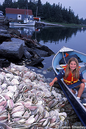 Young girl in a boat looking at pile of shells