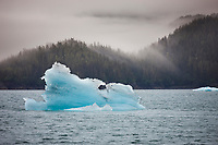 Glacial icebergs from Columbia Glacier along the shores of northern Prince William Sound, southcentral, Alaska.