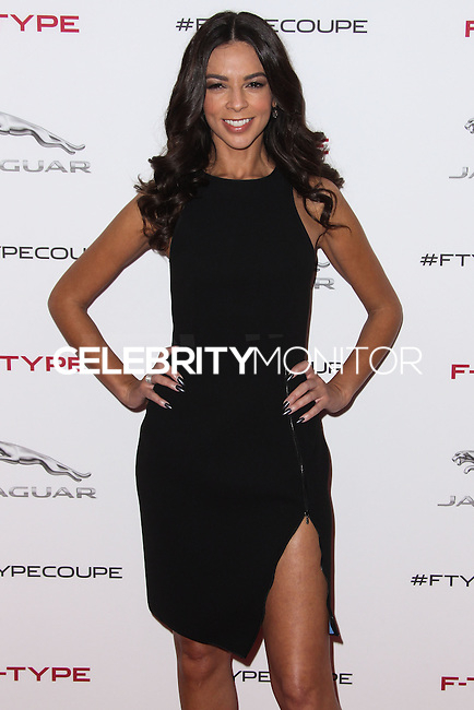 PLAYA VISTA, CA - NOVEMBER 19: Terri Seymour at the 2015 Jaguar F-TYPE Coupe Global Debut held at Raleigh Studios on November 19, 2013 in Playa Vista, California. (Photo by Xavier Collin/Celebrity Monitor)