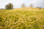 White Barrow neolithic long barrow burial mound tumulus, near Tilshead, Salisbury Plain, Wiltshire, England, UK