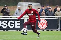 22.11.2016: Eintracht Frankfurt Training