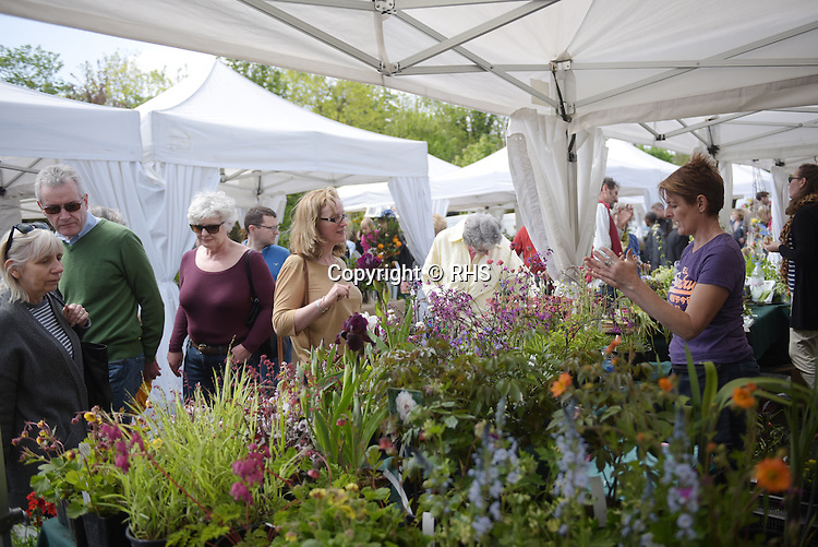 Visitors shop for plants at the RHS Secret Garden Sunday at Blackheath Farmers' Market.