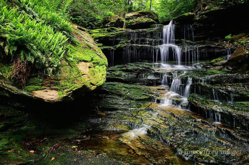 A small, mossy, fern-covered idyllic cascade in Ganoga Glen, Ricketts Glen State Park in northeastern Pennsylvania.