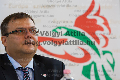Janos Lucsik cofounder of Solyom Airways attends a press conference of the newly founded airline company in Budapest, Hungary on July 24, 2013. ATTILA VOLGYI