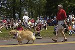 July 4th Parade, 2005