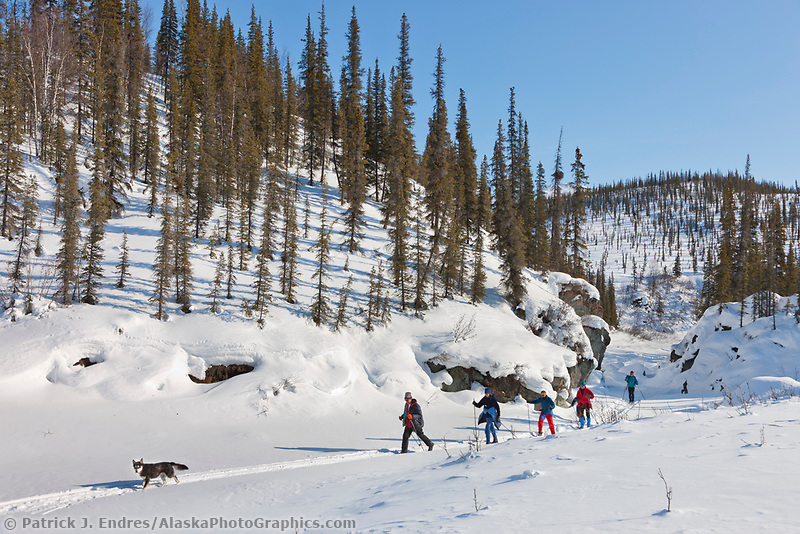 Cross country skiing along Wiseman creek, Brooks Range, Arctic, Alaska.