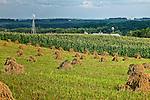 Amish Bales