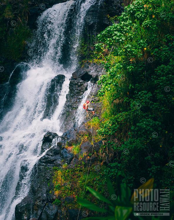 A man rappels down the right side of Kulaniapia Falls, Big Island of Hawai'i.