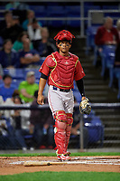 Portland Sea Dogs catcher Jhon Nunez (20) during a game against the Binghamton Rumble Ponies on August 31, 2018 at NYSEG Stadium in Binghamton, New York.  Portland defeated Binghamton 4-1.  (Mike Janes/Four Seam Images)