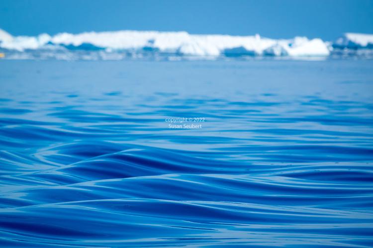 water in Lindblad Cove, Antarctica
