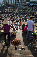 Dalat Market was originally commissioned by the French ambassador to Vietnam in 1929 and was  located at the site where the Hoa Binh Theatre is today. The original Dalat Market was made of pine, which is why people called it Wood Market. Dalat Market was moved under the theatre when it was rebuilt in concrete in the 1950s and now sprawls into surrounding streets and alleys.