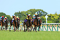 Horse Racing: Yushun Hinba (Japanese Oaks) at Tokyo Racecourse