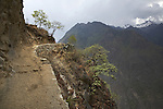 Trail to the remote Incan ruins of Choquequirao in the Peruvian Andes.
