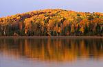 Gorman Lake, Ontario, Canada, Autumn coloured trees