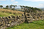 Day 3 - Walking to Gilsland; fence stile