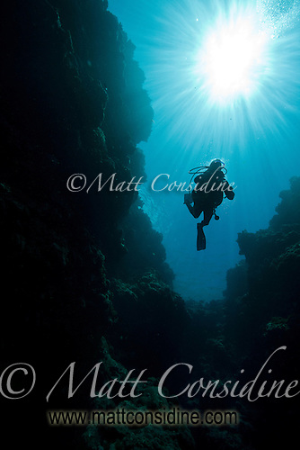 Diver suspended in the crystal clear water, Palau Micronesia. (Photo by Matt Considine - Images of Asia Collection) (Matt Considine)