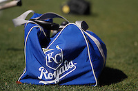 Logo of the Royals of Kasas City on a sports backpack in blue baseball, Major Leagues, Spring Training, minor leagues, Peoria Sport Complex, Arizona, Seattle Mariners, Spring Training, AAA, AA, MLB<br />