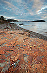 Colorful Bar Harbor Formation rock leads into Bar Harbor on Mount Desert Island, Maine, USA