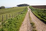 Ridgeway long distance footpath looking east on Hackpen Hill, Wiltshire, England, UK