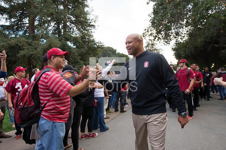 Stanford, CA - October 15, 2015: Stanford football vs UCLA at Stanford Stadium Thursday night.