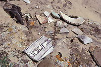 Ancient Anasazi pottery shards, Ute Mountain Tribal Park, Colorado, U.S.A.