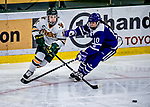 16 February 2019: University of Vermont Catamount Forward Abby Cleary, a Junior from Buffalo, NY, in third period action against the Holy Cross Crusaders at Gutterson Fieldhouse in Burlington, Vermont. The Lady Cats defeated the Crusaders 4-1 to sweep their 2-game weekend series. Mandatory Credit: Ed Wolfstein Photo *** RAW (NEF) Image File Available ***