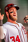 20 May 2018: Washington Nationals outfielder Bryce Harper in the dugout prior to a game against the Los Angeles Dodgers at Nationals Park in Washington, DC. The Dodgers defeated the Nationals 7-2, sweeping their 3-game series. Mandatory Credit: Ed Wolfstein Photo *** RAW (NEF) Image File Available ***