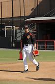 Baseball-Bakich 2010