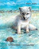 GIORDANO, REALISTIC ANIMALS, REALISTISCHE TIERE, ANIMALES REALISTICOS, paintings+++++,USGI2581,#A#
