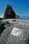 Olympic National Park, Shi Shi Beach, Point of Arches, Washington State, Pacific Northwest, family amidst sea stacks, Pacific Ocean, Olympic Peninsula, Nature Conservancy Preserve was eventually handed over to Olympic National Park..