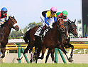 Horse Racing: 85th Japanese Derby at Tokyo Racecourse