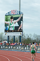 York High School's Matt Plowman walks off the track while the replay of his 1600-meters winning finish is shown on the videoboard at the 2015 Kansas Relays.
