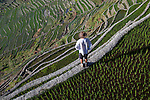 A tourist looks down on the stunning Ifugao stone-walled rice terraces in the village of Batad in North Luzon, Philippines.