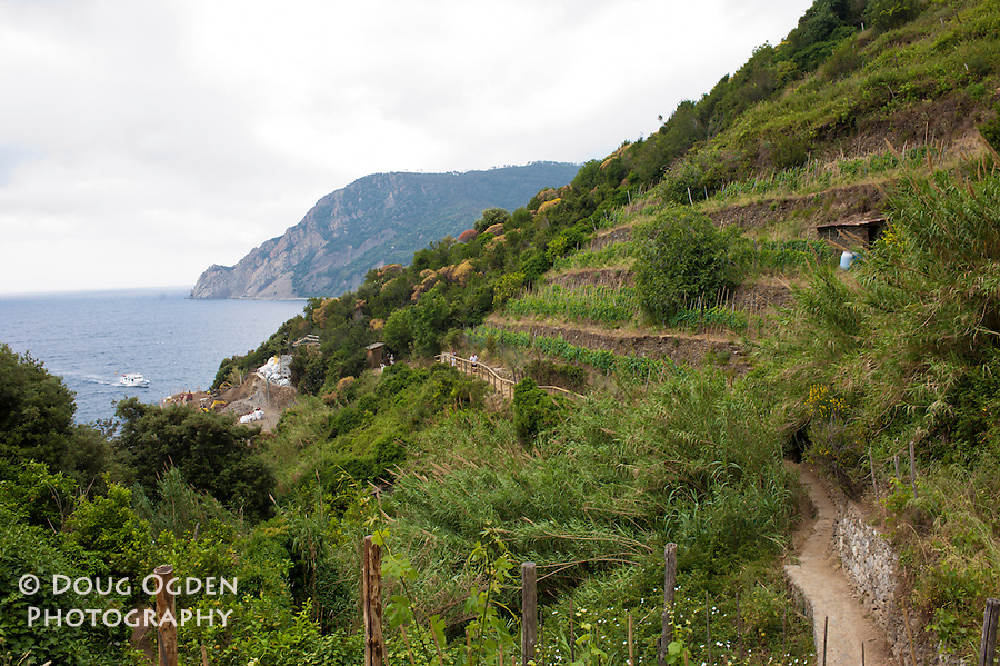 Along the trail, Cinque Terre, Italy