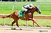 Funny Lady winning at Delaware Park on 7/29/13