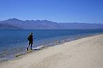 A man walks along the shorline of the Sea of Cortez (Gulf of California), Bahia de los Angeles, Baja California, Mexico