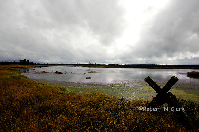 The Henry's Fork of the Snake River on a cloudy fall day