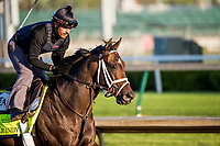 LOUISVILLE, KY - MAY 01: Nobel Indy gallops in preparation for the Kentucky Derby at Churchill Downs on May 1, 2018 in Louisville, Kentucky. (Photo by Alex Evers/Eclipse Sportswire/Getty Images)