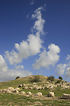 Israel, Shephelah. Tel Zafit is identified as Gath, one of the ancient Canaanite and Philistine five cities (along with Gaza, Ekron, Ashkelon, and Ashdod)