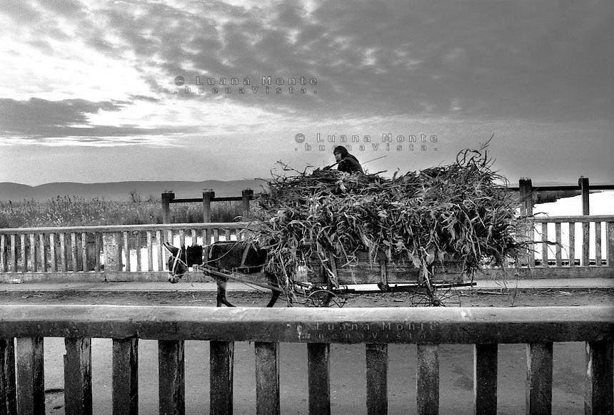 - Delta del Danubio, Enisala. Nell'area del delta del Danubio il dato ufficiale della disoccupazione femminile tocca circa il 90 per cento. In realtà la maggior parte delle donne lavora duramente nell'economia rurale locale per aiutare la propria famiglia...- Danube Delta Area, Enisala. Danube delta area women are almost ninety per cent unemployed, according to tha law of averages. In point of fact, the mayority of them works hard in the local rural economy to help their family.