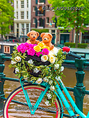 Assaf, CUTE ANIMALS, LUSTIGE TIERE, ANIMALITOS DIVERTIDOS, teddies, paintings,+Amsterdam, Bicycle, Bicycles, Bike, Bikes, Bridge, Bunch Of Flowers, Bunch of Roses, Canal, Childhood, City, Cityscape, Color+, Colour Image, Cute, Flowers, Love, Parked, Photography, River, Romance, Romantic, Roses,Teddy Bear, Teddy Bears, Toy, Toys,+Urban Scene,Amsterdam, Bicycle, Bicycles, Bike, Bikes, Bridge, Bunch Of Flowers, Bunch of Roses, Canal, Childhood, City, Cit+yscape, Color, Colour Image, Cute, Flowers, Love, Parked, Photography, River, Romance, Romantic, Roses,Teddy Bear, Teddy Bear+,GBAFAF20160520,#ac#, EVERYDAY ,photos,photo